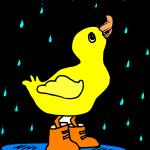 rain-312098_1280